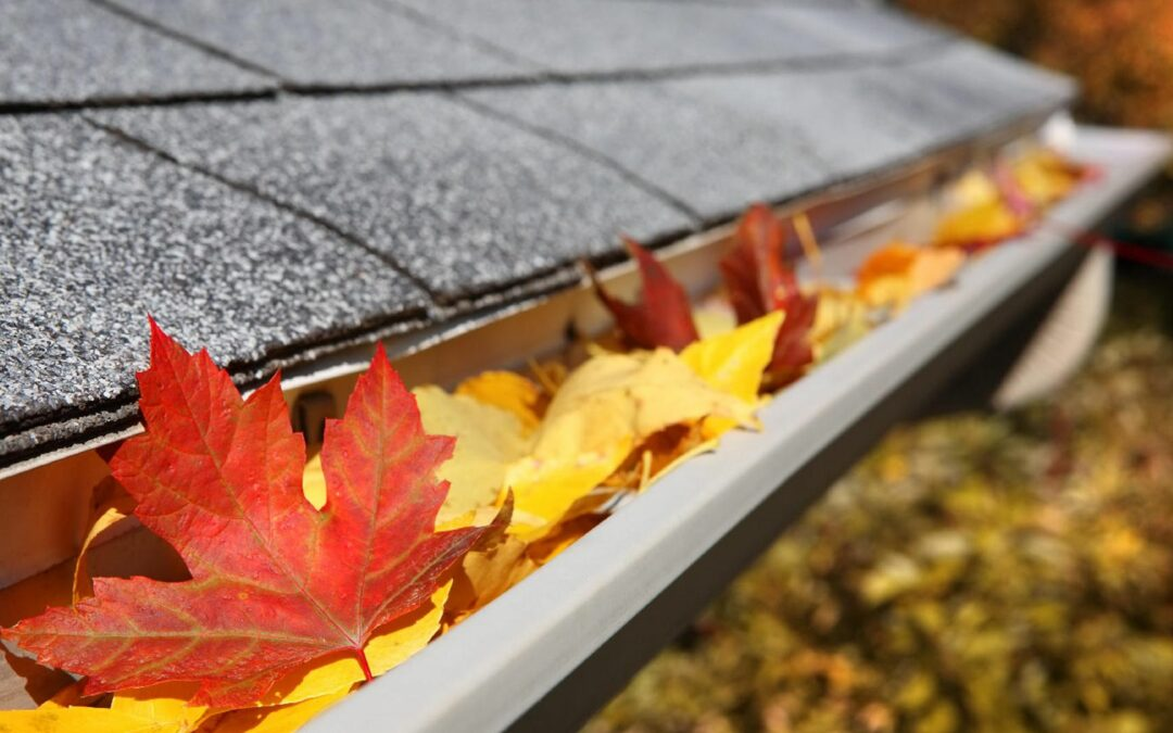 How Important Is To Clean Your Gutters in Vancouver?