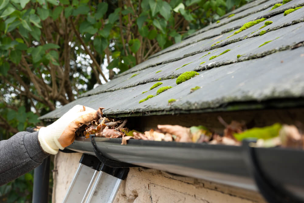 North Vancouver Gutter Cleaning: Cleaning Tips for Residents