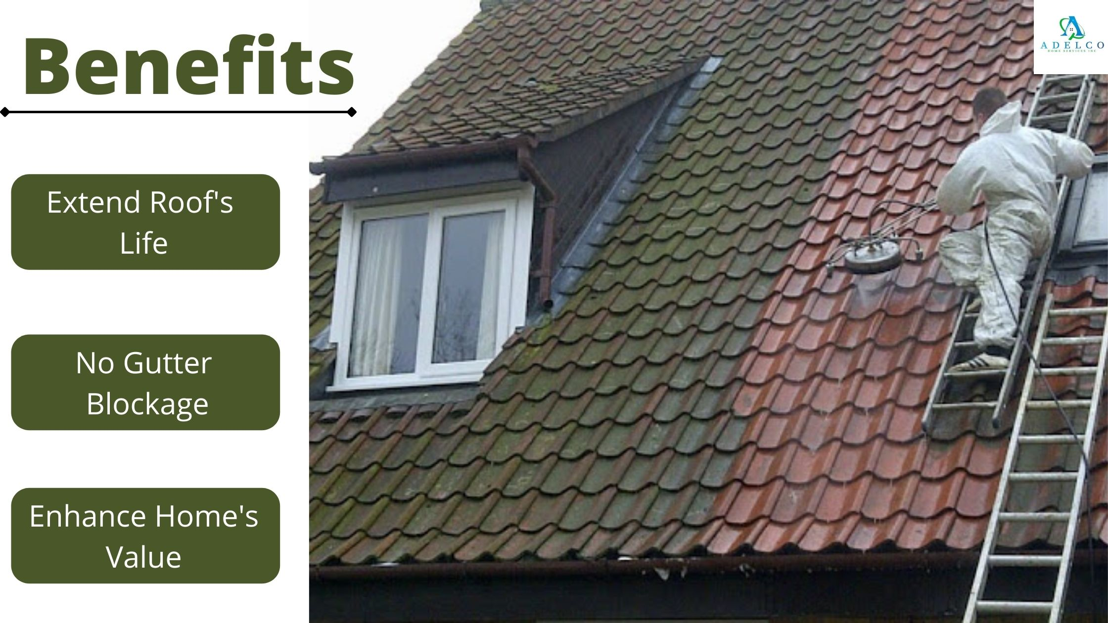 Benefits of Roof Moss Removal