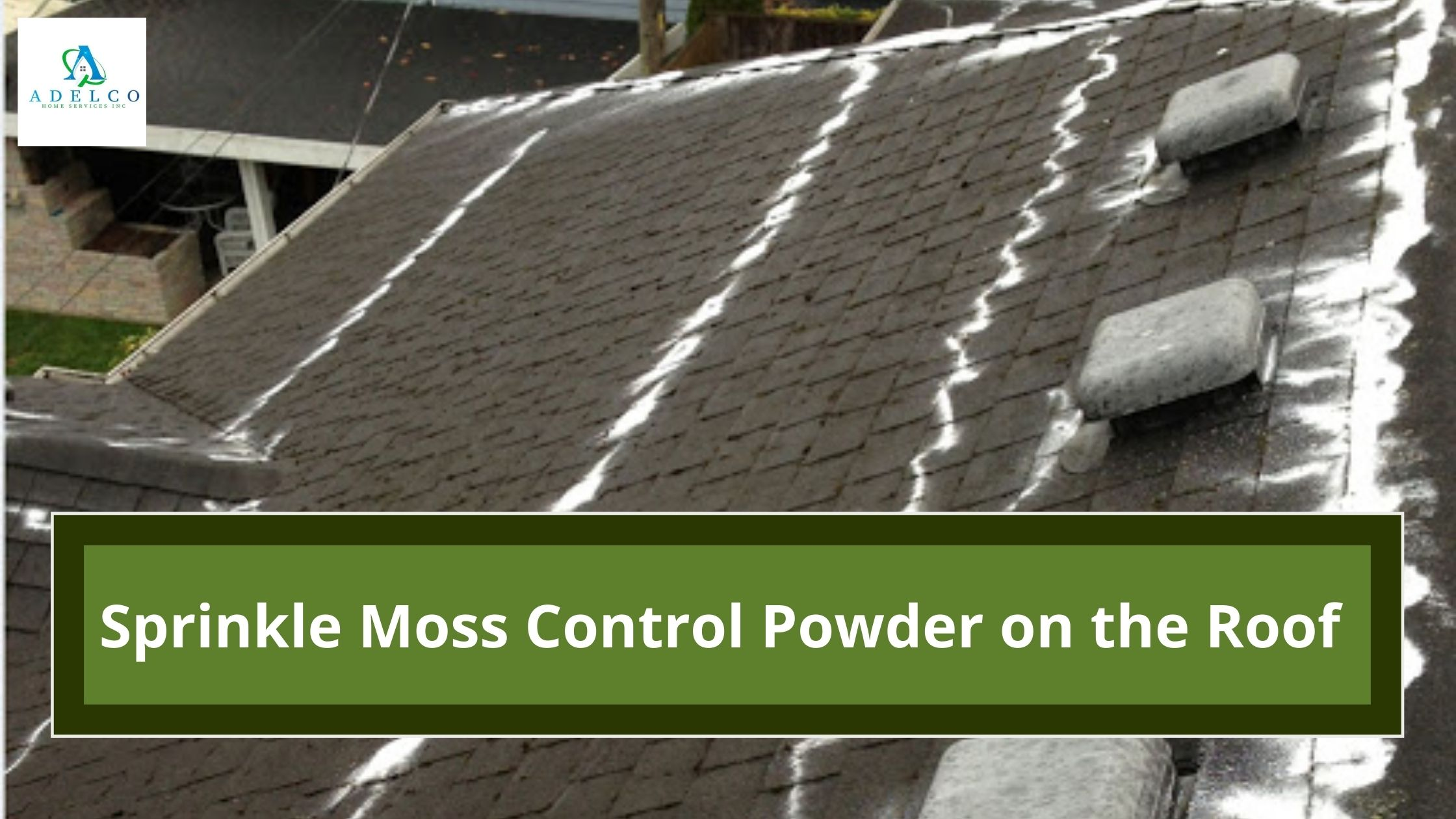 Sprinkle Moss Control Powder on the Roof