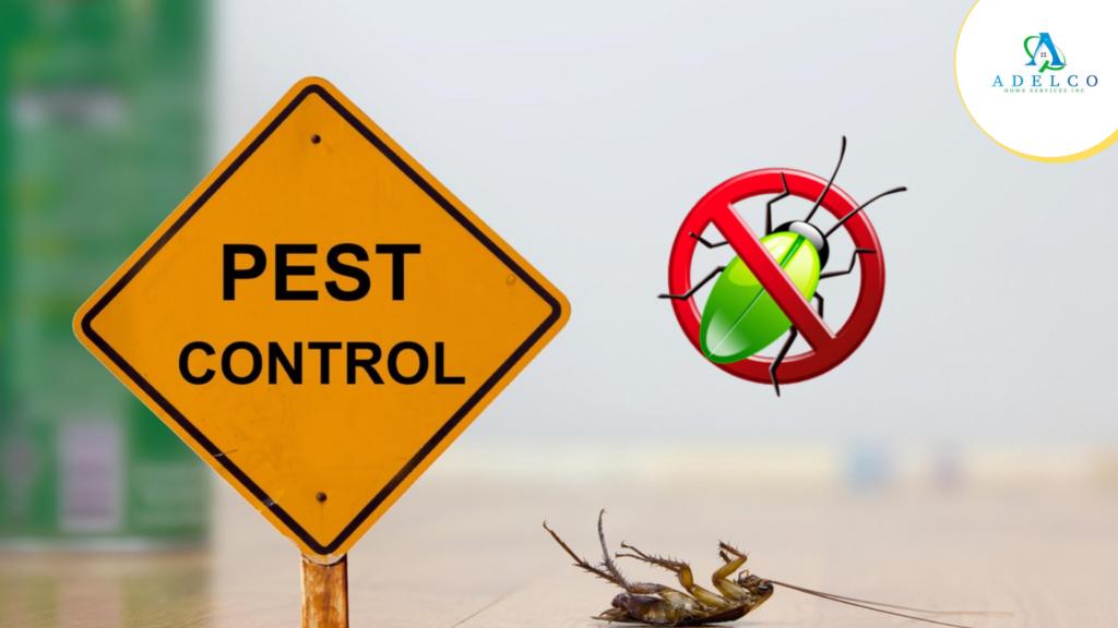 Keep Away Pest Problem