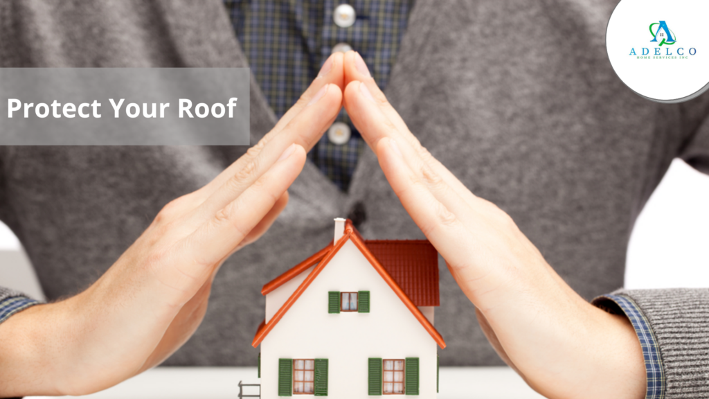 Protect Your Roof