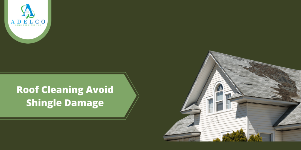 Roof Cleaning Avoid Shingle Damage