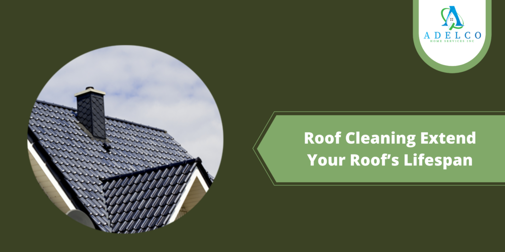 Roof Cleaning Extend Your Roof's Lifespan