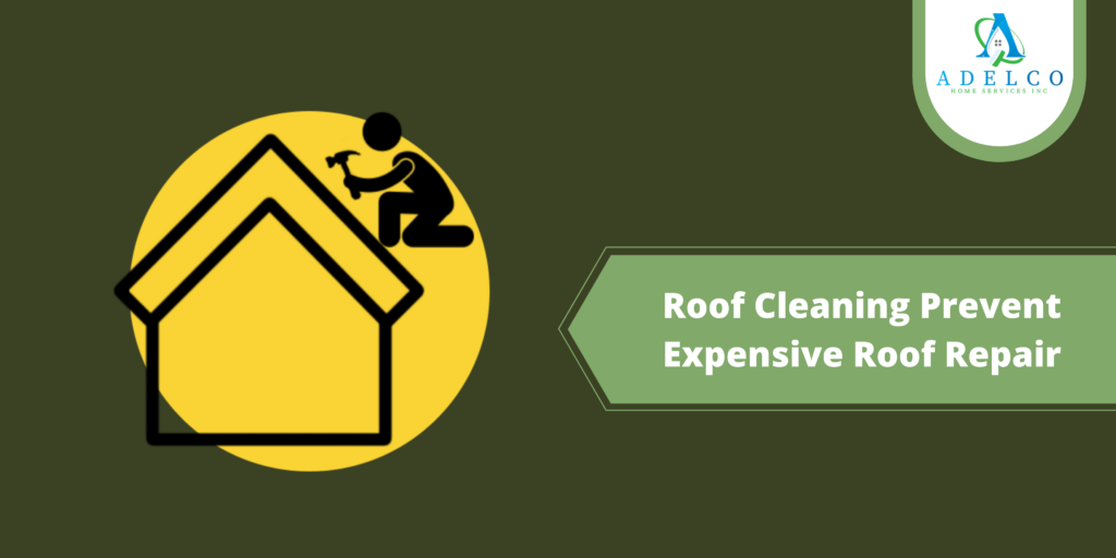 Roof Cleaning Prevent Expensive Roof Repair